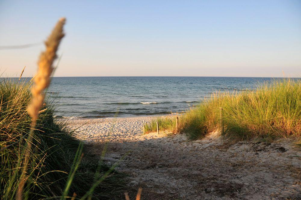Ostseebad Prerow Darß Natur Aktiv sein Weitere
